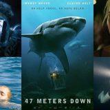 サメ映画「 海底47m 」ネタバレあり解説、シャークダイビングは死んでも体験したくない