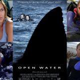 サメ映画「 オープン・ウォーター 」ネタバレあり解説、ダイバーが海に取り残されるお話