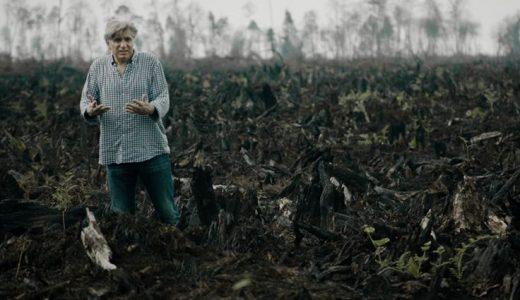 【 仮設の映画館 】「グリーン・ライ エコの嘘 」考察レビュー、環境に優しい商品のヤバイ現実を知る