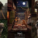 Disney+ (ディズニープラス) 映画「 わんわん物語 」ネタバレ感想レビュー、純粋なファンタジーだワン