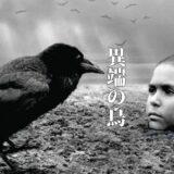 「 異端の鳥 」考察レビュー、ナチスのホロコーストから逃れてきた少年の物語(戦争と人間の本質)