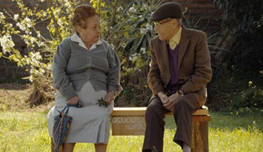 「 83歳のやさしいスパイ 」考察レビュー、実話だけに感動も深い